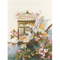 Какаду у клетки - Cockatoos with Birdcage (PN8103)