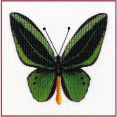 Набор для вышивания крестиком Золотое руно Бабочка 6 (УР-006)