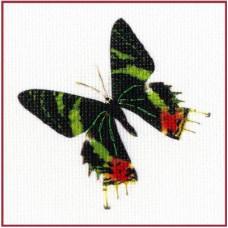 Набор для вышивания крестиком Золотое руно Бабочка 9 (УР-009)