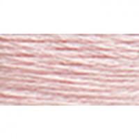 Perle Cotton Size 8 - #818