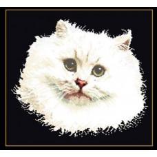 Белый персидский кот (TG104505)