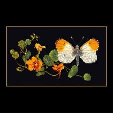 Бабочка на настурции (TG43705)