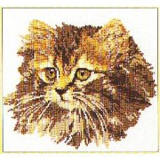 Кот (TG930A)