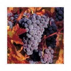Салфетка Грозди спелого винограда (507)
