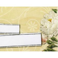 Заготовка для открытки с конвертом, Белая магнолия (14 х 10,5), 00050 (71)