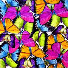 Салфетка Великолепные бабочки (587)