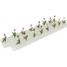 Миниатюрные тюльпаны (00307)