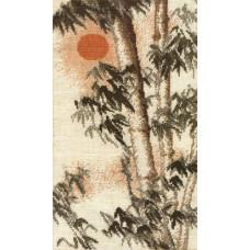 Бамбук (356)