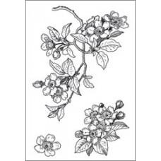 Штамп Cherry Blossom (HOP2X3-1083)