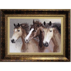 Вольные кони (М-04)*