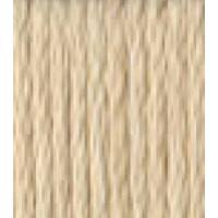 DMC Perle Cotton Size 5 - #543