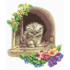 Котёнок (M091)