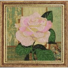 Белая роза (254)