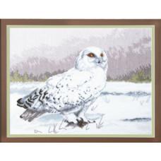 Набор для вышивания крестиком Чарівна мить Мудрая сова Букля (М-80)