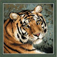 Амурский тигр (1282)