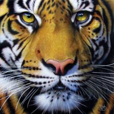Паззл GOLDEN TIGER FACE (58628)