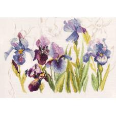 Голубые ирисы - Blue Flowers Iris (PN8027)