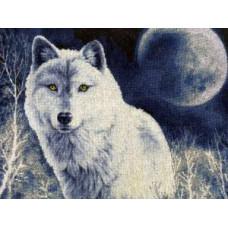 Набор для вышивания крестиком Золотое руно Белый волк (ДЖ-029)