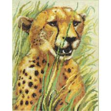 Леопард (267)