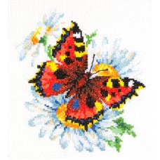 Бабочка и ромашки (42-11)