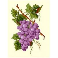 Виноград (10.40)