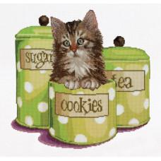 Котенок в банке с печеньем (TG735A)