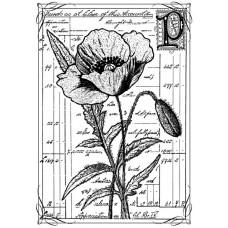 Резиновый штамп Pretty Poppy (CI-210)
