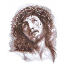 Набор для вышивания крестиком Чарівна мить Иисус (417)