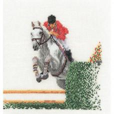 Конный спорт (TG3090A)