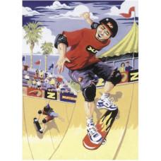 Скейтбордист (PJS 22)