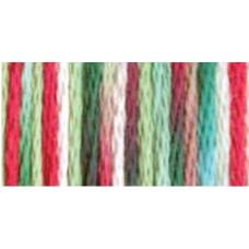 DMC Color Variations Perle Cotton Size 5 - #4042
