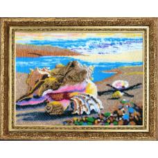Морские ракушки (324)