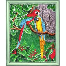 Самоцветы джунглей (514)