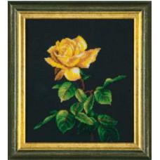 Золотая роза (Б-714)