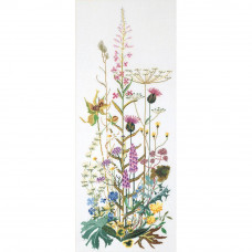 Полевые цветы, лен (TG821)