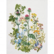 Дикие цветы, лен (TG424)