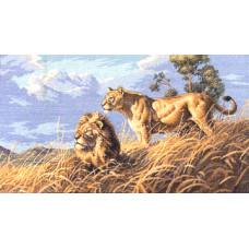 Африканские львы (03866)
