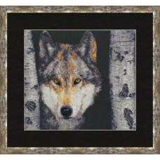Волк (ДЖ-025)