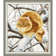 Рыжий кот (К-010)*