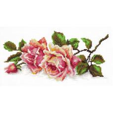 Аромат розы (40-48)