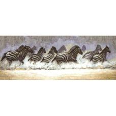 Бегущие зебры (419)