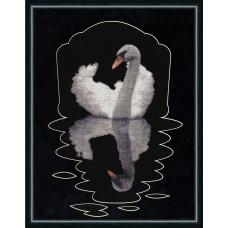 Набор для вышивания крестиком Золотое руно Зеркало души (С-008)