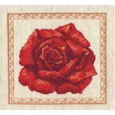 Красная роза (40-16)