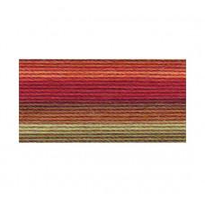 Хлопковая нить Lizbeth Cordonnet Cotton №80, Autumn Spice (HH80 136)