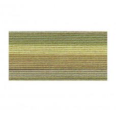 Хлопковая нить Lizbeth Cordonnet Cotton №80, Leafy Greens (HH80 138)