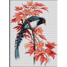 Птичка (B293)