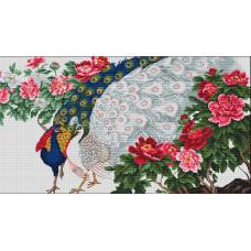 Павлины в цветах (B462)