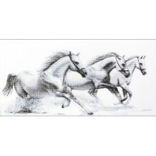 Белые лошади (B495)