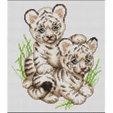 Тигрята (B189)