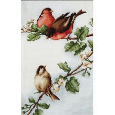 Птички (B216)